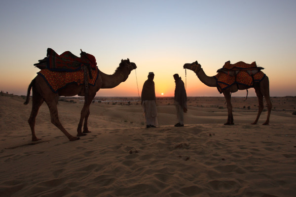 Jaisalmer Tour and Travel Guide